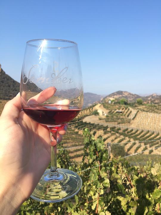 Sådan vælger du den rette vin til maden